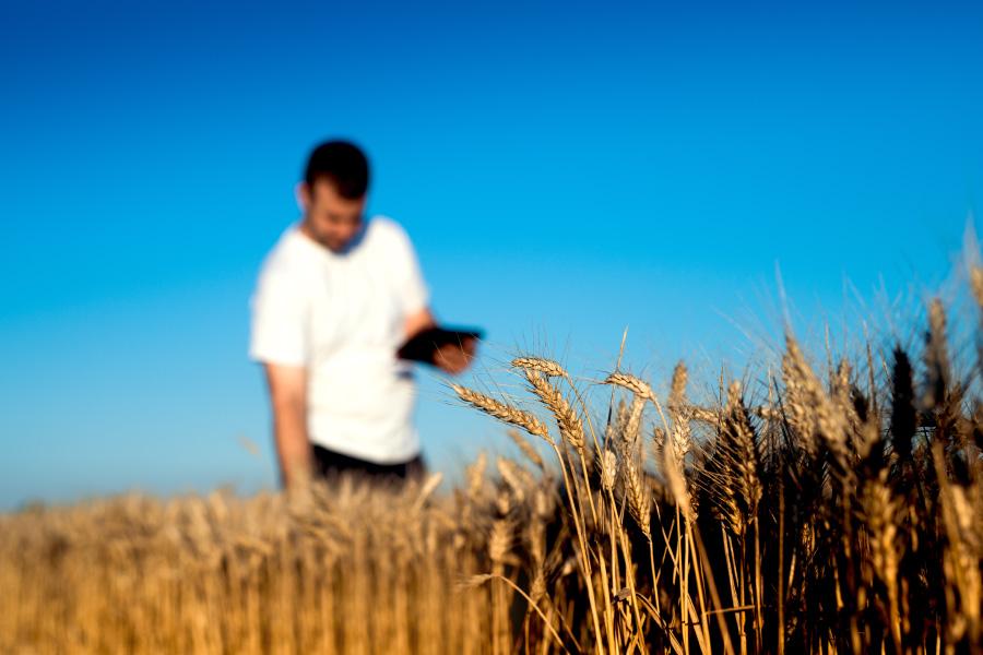 Software de Field service para la gestión agrícola